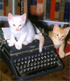 Hemingways cats